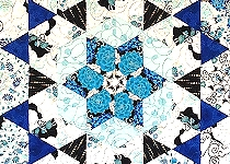 'Blue Roses'
